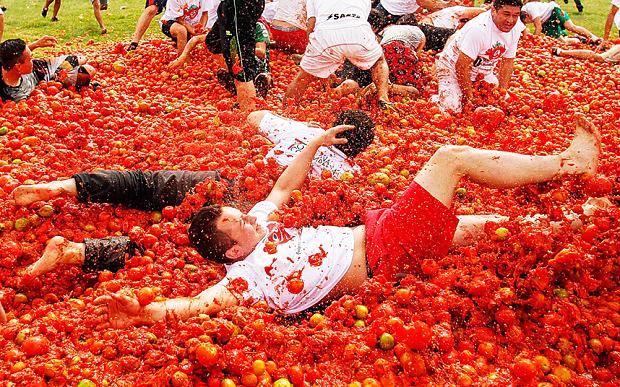 2428793b / Spain - Tomatina Festival